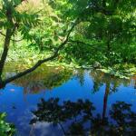 Ecowork_Ökologie